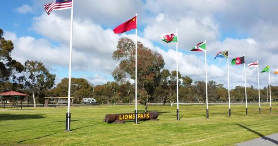 Flags in Lions Park